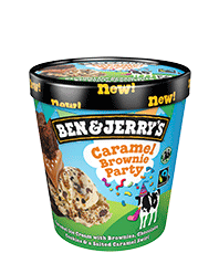 Caramel Brownie Party Original Ice Cream Pots